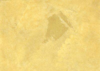 shadows rc-8657